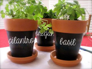 herb-labels-for-flowerpots-etsy-2